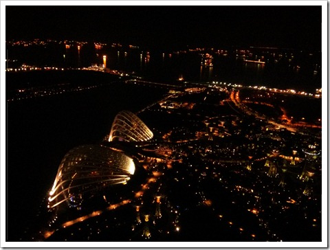 View from the Marina Bay Sands deck