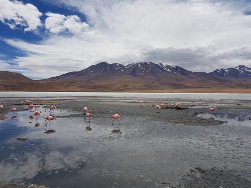 Laguna Hedonda