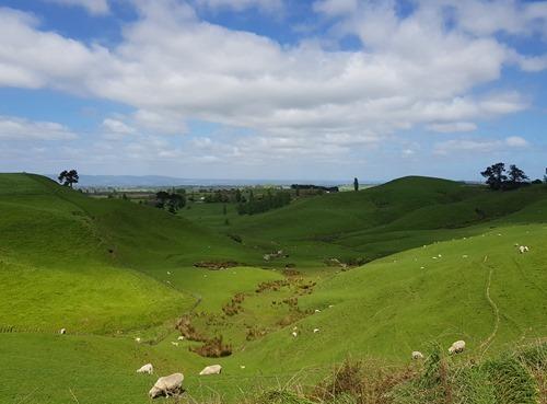 The Alexander Farm