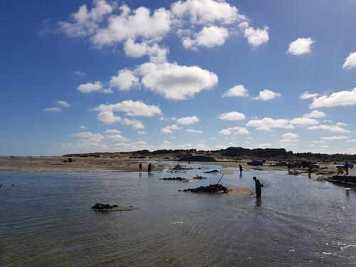 Whitebaiters on Horoki Beach