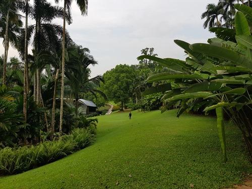 Lovely open lawns