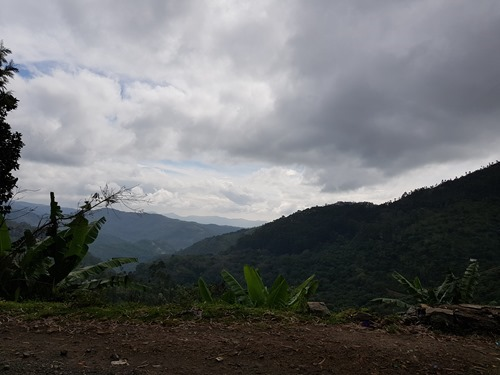 The view into the Palani Hills