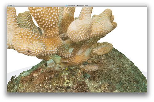 Coral model in Memento on OS X