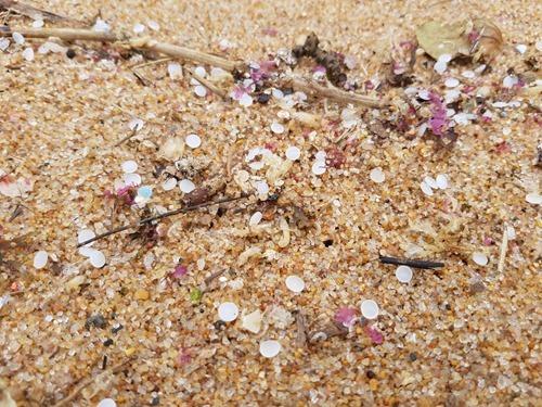 Nurdles on the beach