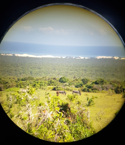 A view through the binoculars
