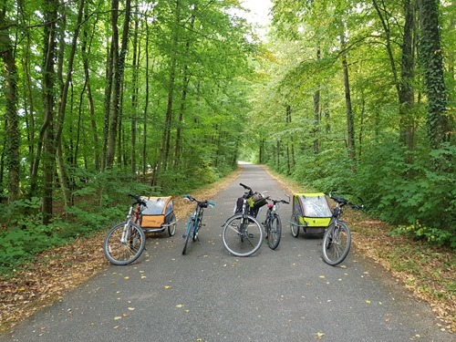 Our bikes in the forest