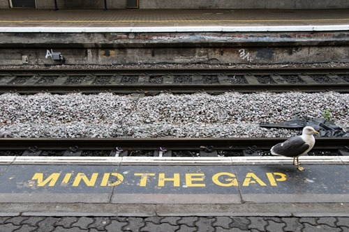Fill the gap in your platform knowledge