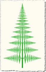 Straight fern